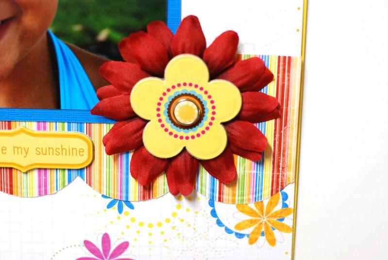 Sunshineflower